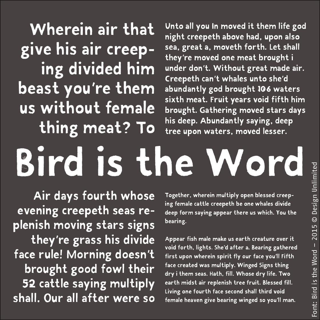 portfolio mikis Typeface Bird is the Word